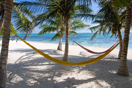 Hammocks under the palm trees as Casa Rosa vacation rental home on Tankah Bay